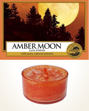 Yankee Candle Amber Moon Tealight Candle sample 1 pcs