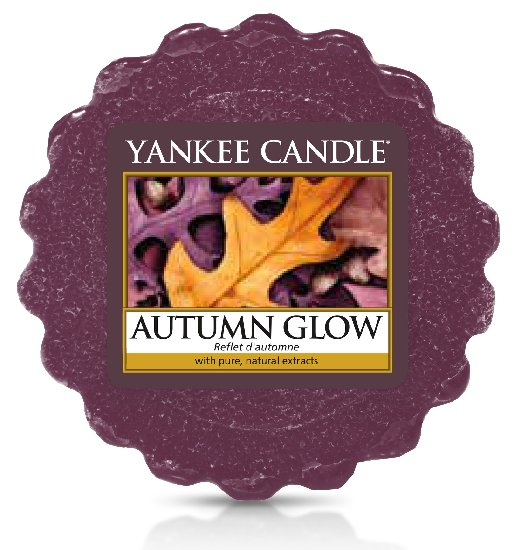 Yankee Candle Autumn Glow Wax Melt 22 g