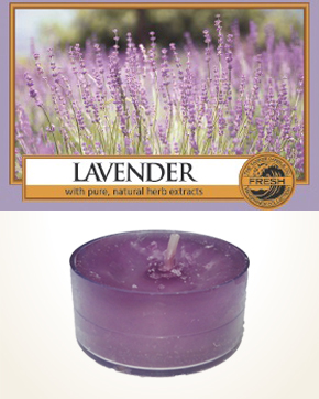 Yankee Candle Lavender Tealight Candle sample 1 pcs