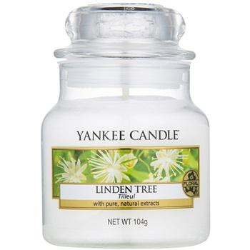 Yankee Candle Linden Tree vonná svíčka 104 g Classic malá
