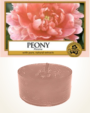 Yankee Candle Peony Tealight Candle sample 1 pcs