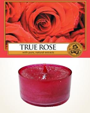 Yankee Candle True Rose čajová svíčka vzorek 1 ks