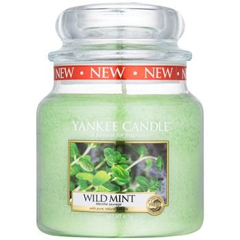 Yankee Candle Wild Mint vonná svíčka 411 g Classic střední